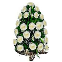 Jerba trandafiri albi