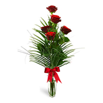 Buchet simplu din 5 trandafiri rosii