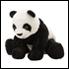 Panda +35 lei