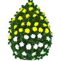 Coroana crizanteme doua culori