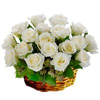 Cos funerar trandafiri albi