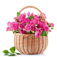 Cos romantic cu 55 trandafiri roz