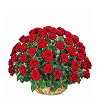 Cos select cu 59 trandafiri rosii
